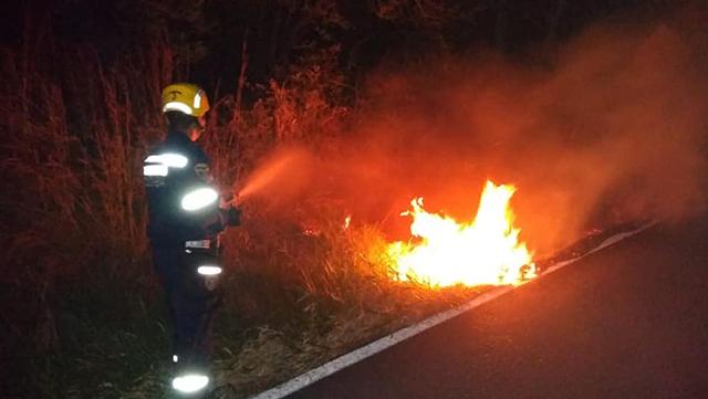 Bomberos de Gigante controlan incendio de cobertura vegetal