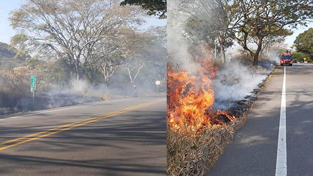 Continúan  incendios Forestales en Gigante.