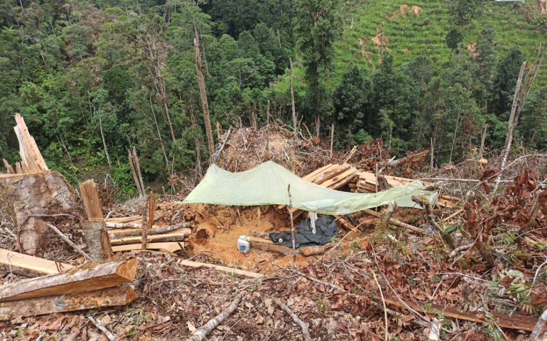 Operaciones en el sur del Huila arrojaron positivos resultados